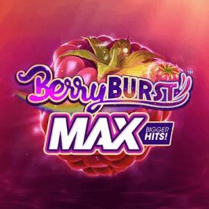 BerryBurst logo achtergrond