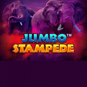 Jumbo Stampede side logo review