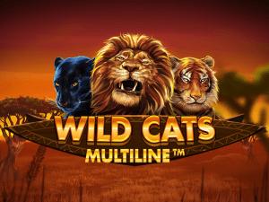 Wild Cats Multiline logo achtergrond