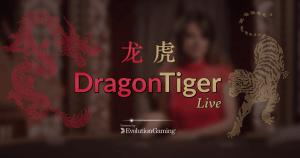 Dragon Tiger logo achtergrond