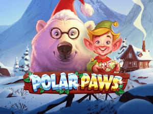 Polar Paws logo achtergrond