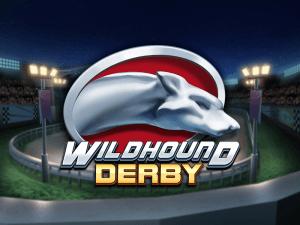 Wildhound Derby logo achtergrond