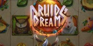 Druids Dream logo achtergrond