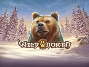Wild North logo achtergrond