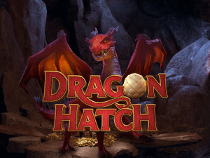 Dragon Hatch logo achtergrond