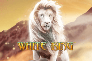 White King side logo review