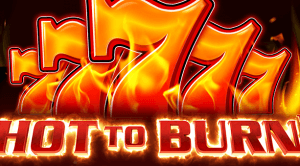 Hot To Burn logo review
