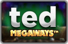 Ted Megaways side logo review