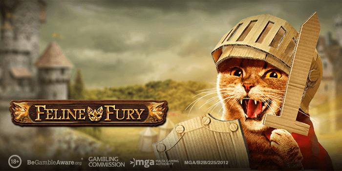 Play 'n Go brengt Feline Fury gokkast uit