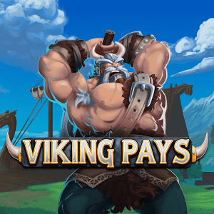Viking Pays side logo review