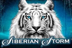 Siberian Storm logo achtergrond