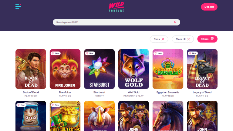 Wild Fortune Casino Screenshot 2