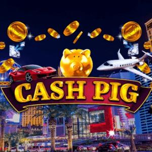 Cash Pig logo achtergrond