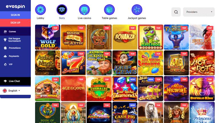 EvoSpin Casino Screenshot 2