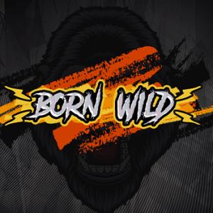 Born Wild logo achtergrond