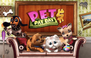 Pet Pay Day logo achtergrond